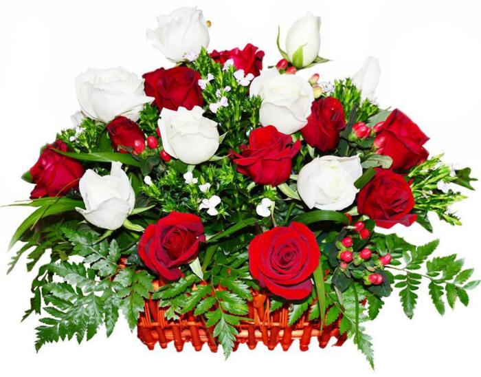 белые и красные розы в одном букете