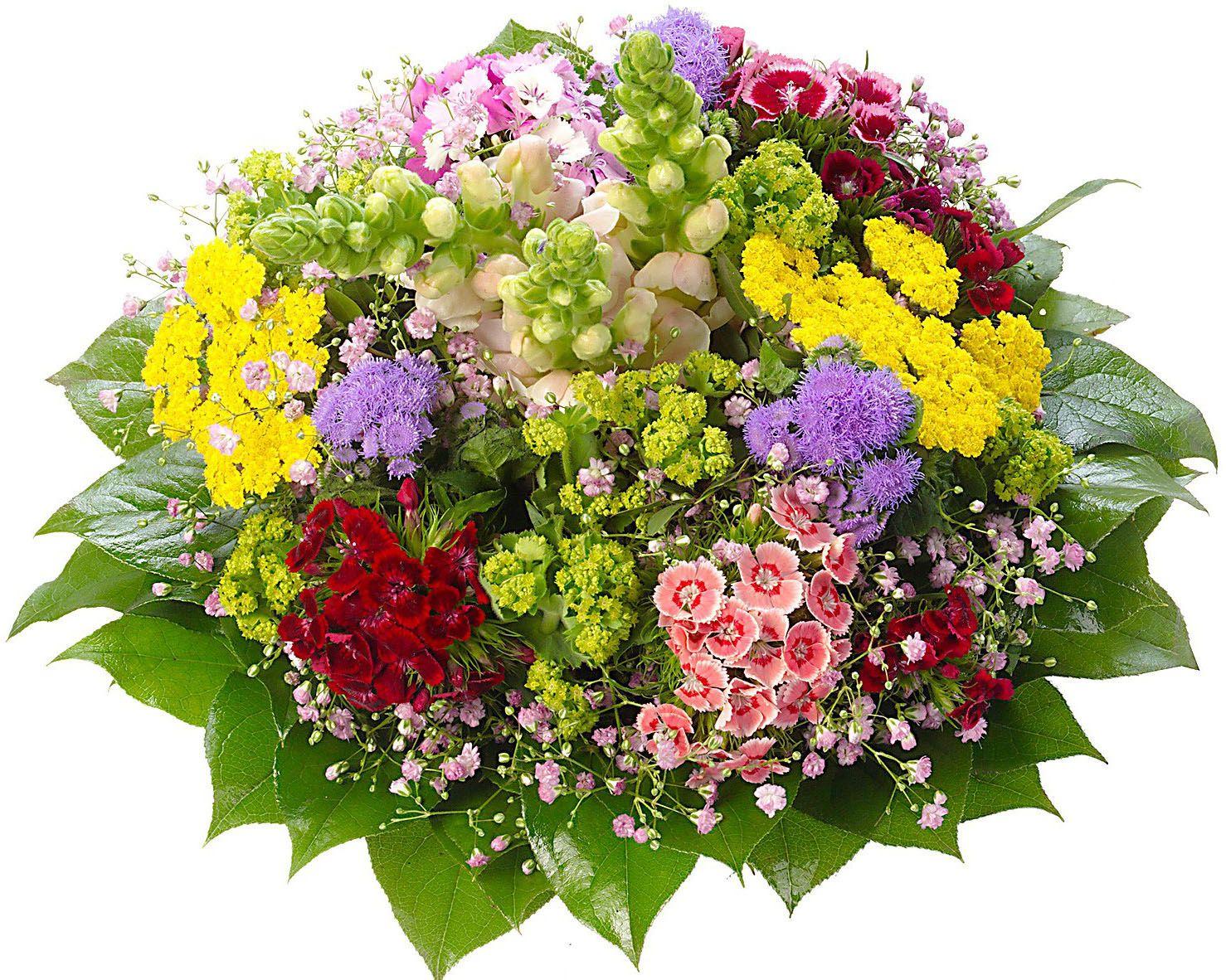 Цветы яркие открытки