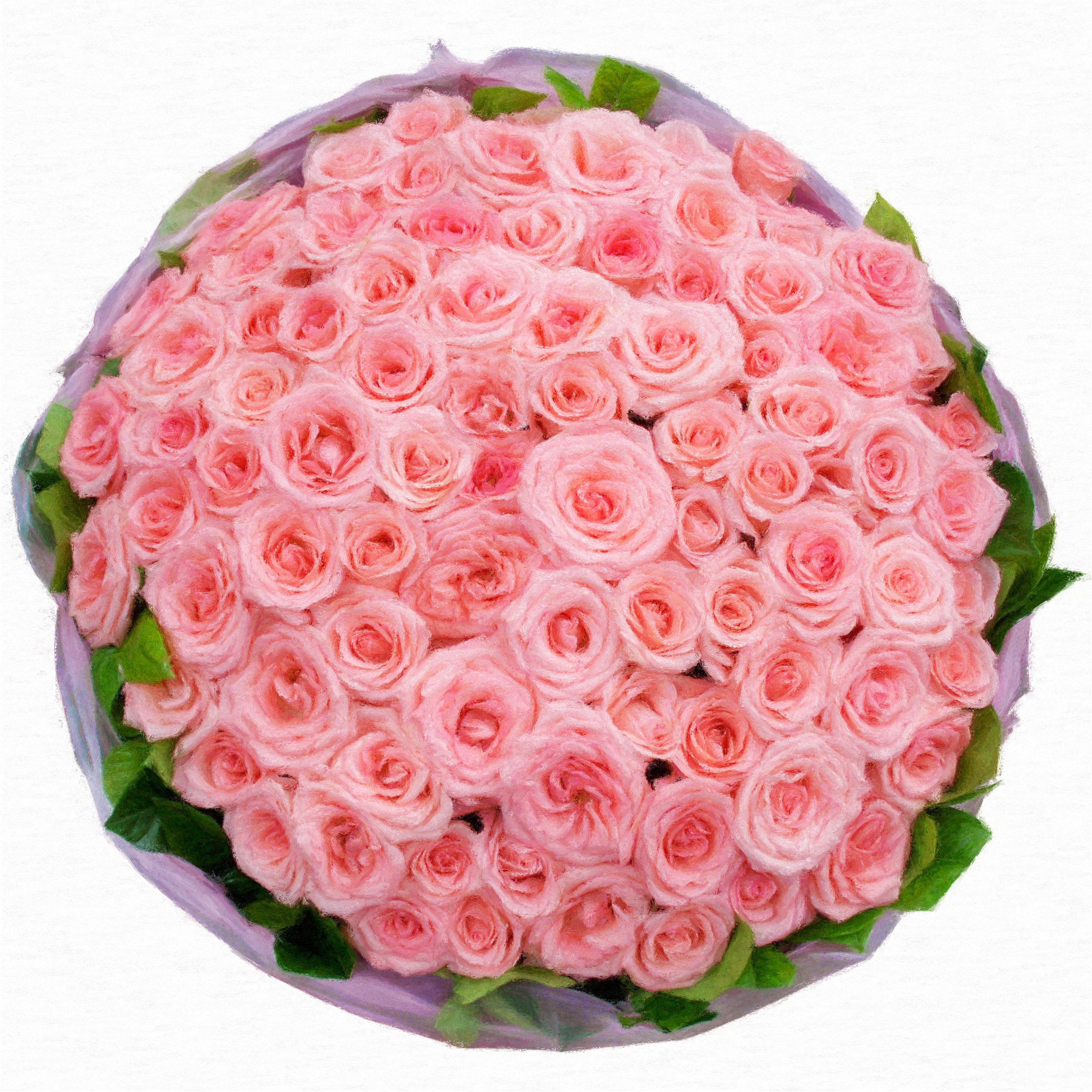 Розы красные много