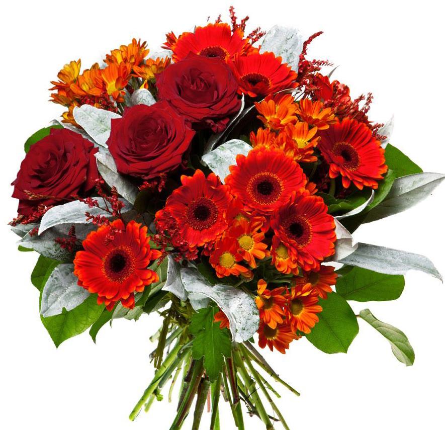 Доставка цветов обмен ссылками придумать на заказ подарок мужчине
