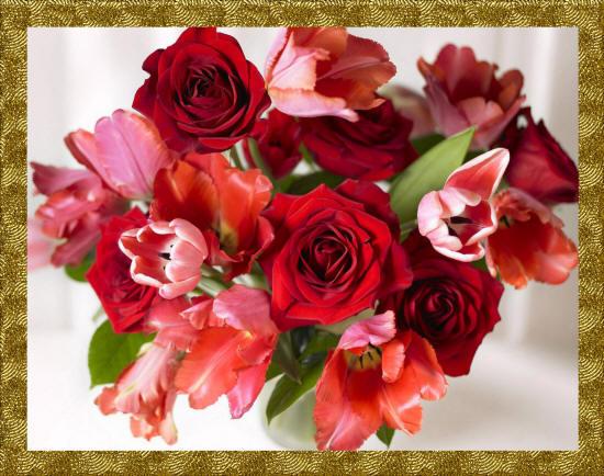 Красивый букет алых роз картинка