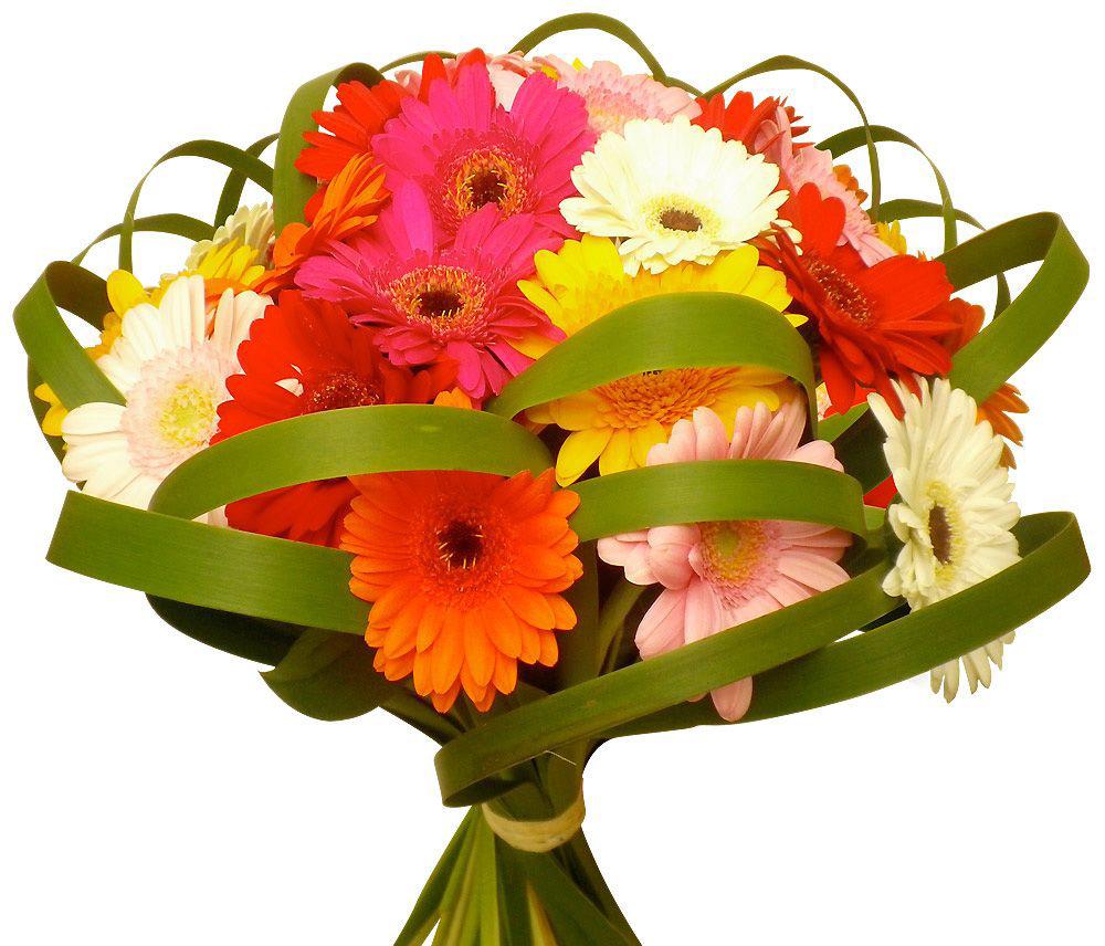 Отзывы цветков пластический хирург
