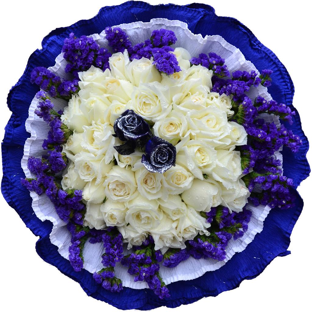 фото очень красивых роз синих