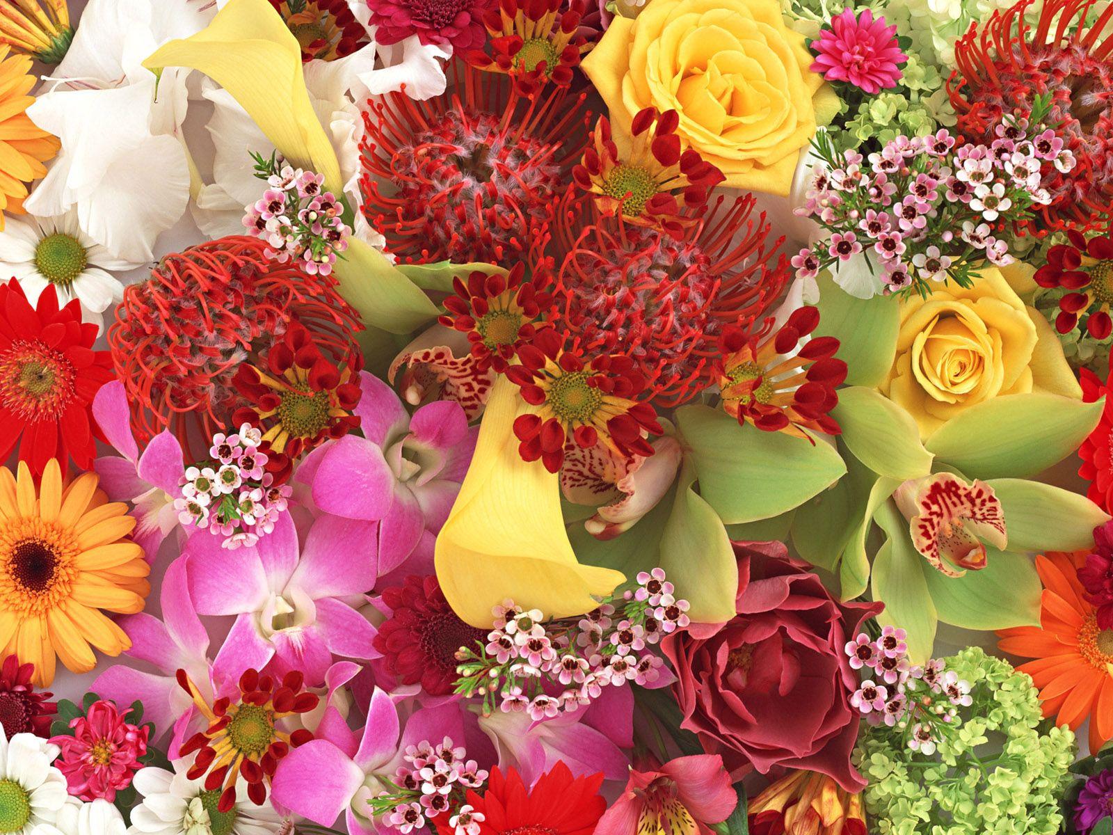 Красивые букеты осенних цветов фото