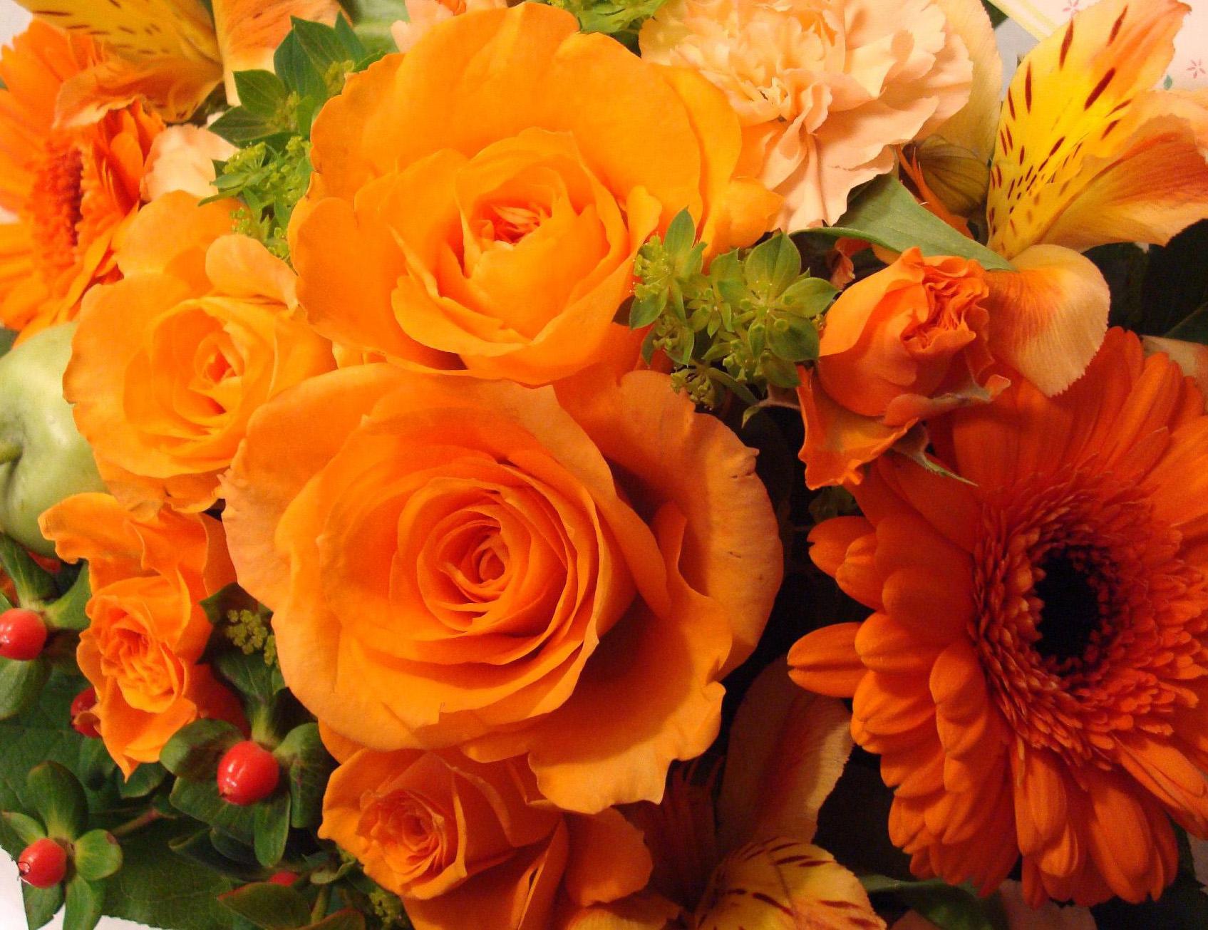 Картинки по запроÑу оранжевые цветы