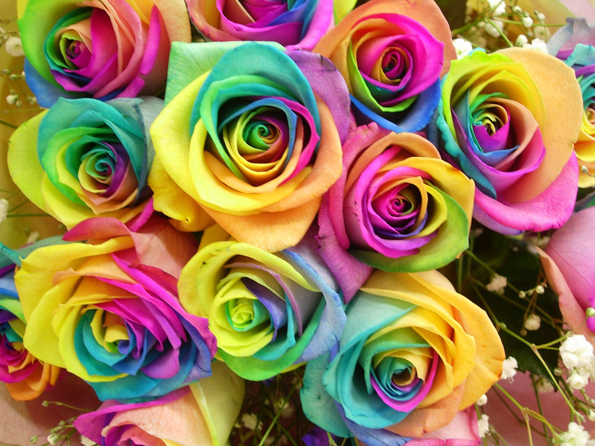 Картинки букет белые розы