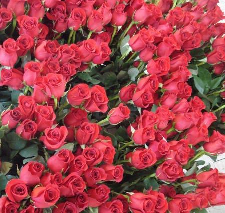 Букет из красных роз актуален всегда