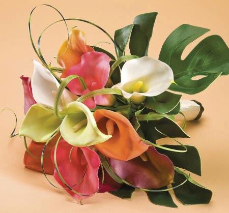 Разноцветные цветы каллы в букете