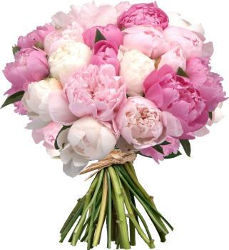 bouquet_50_small.jpg