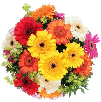Поздравляем с Днем Рождения Юлию (coon) Bouquet_70_small
