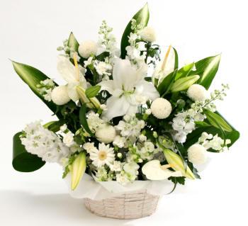 композиция из белых цветов