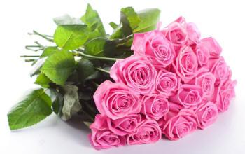 Поздравляем с Днем Рождения Ларису (-lindoveta-) Buket-62_small
