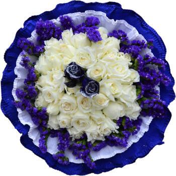 белые и синие розы