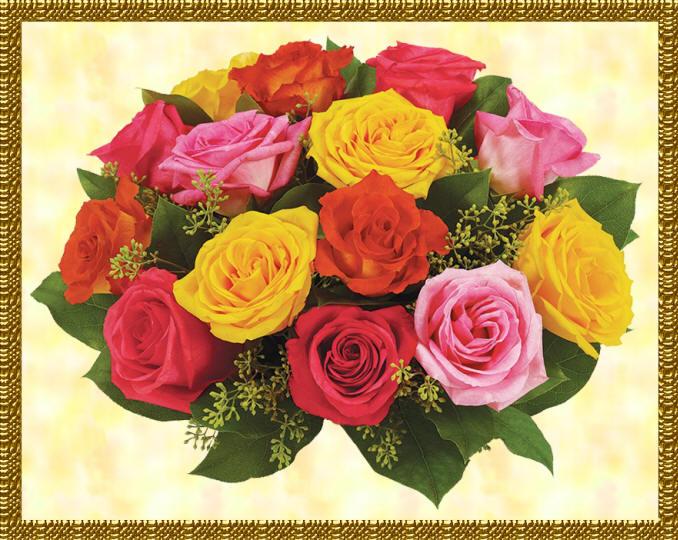 Разноцветные цветы и растения с фото и названиями: http://kartinki-cvetov.ru/raznocvetnye.html