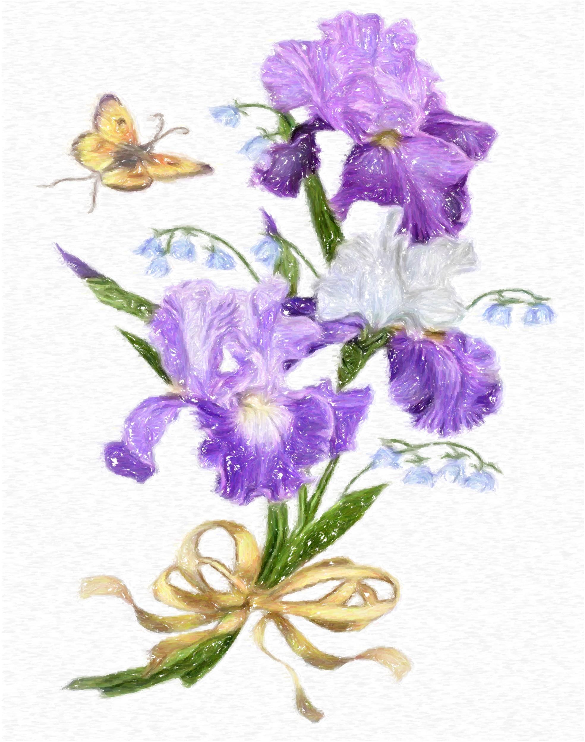 Фиолетовые цветы фото с названиями для букета