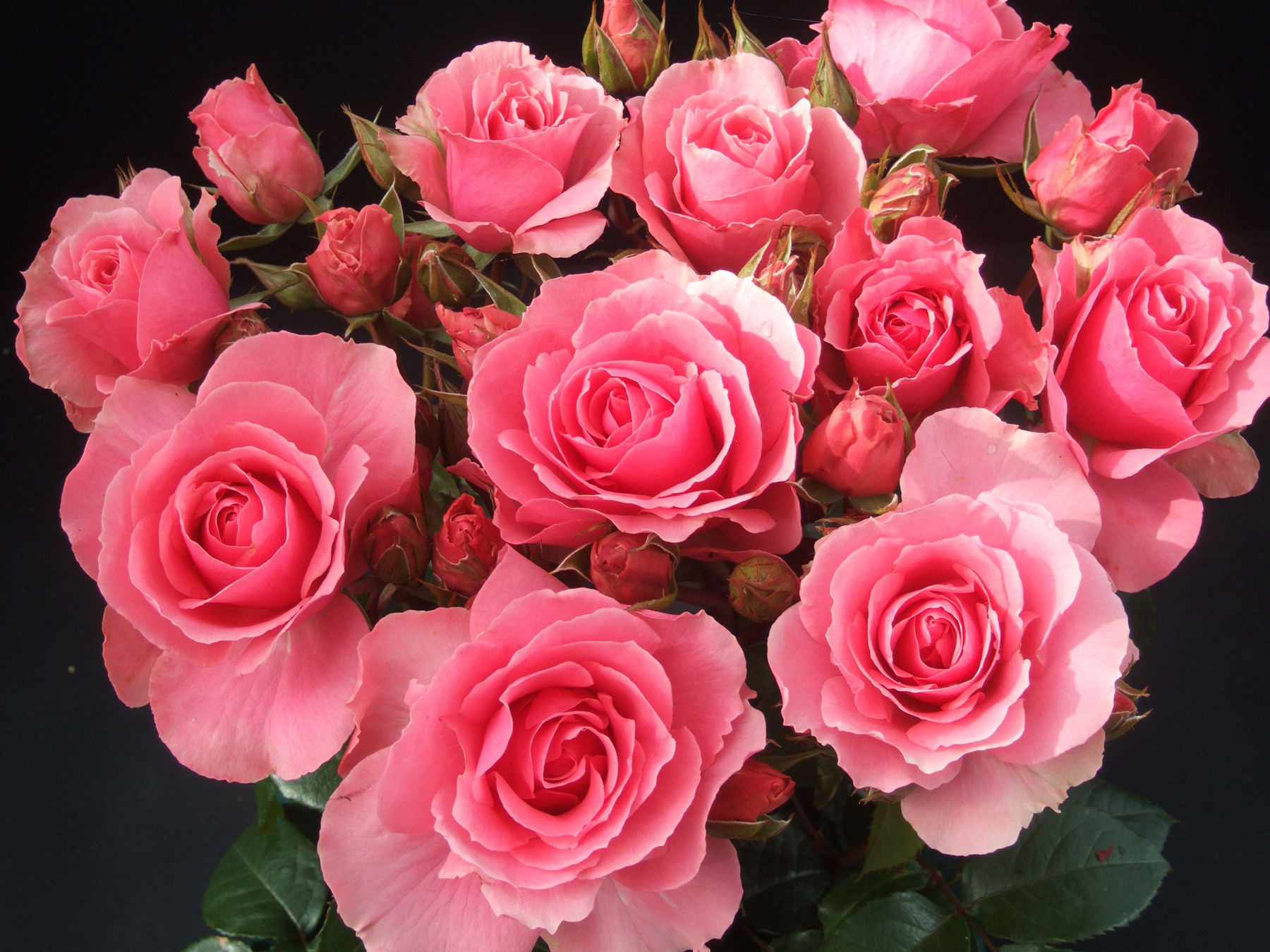 Цветы букеты красивые фото