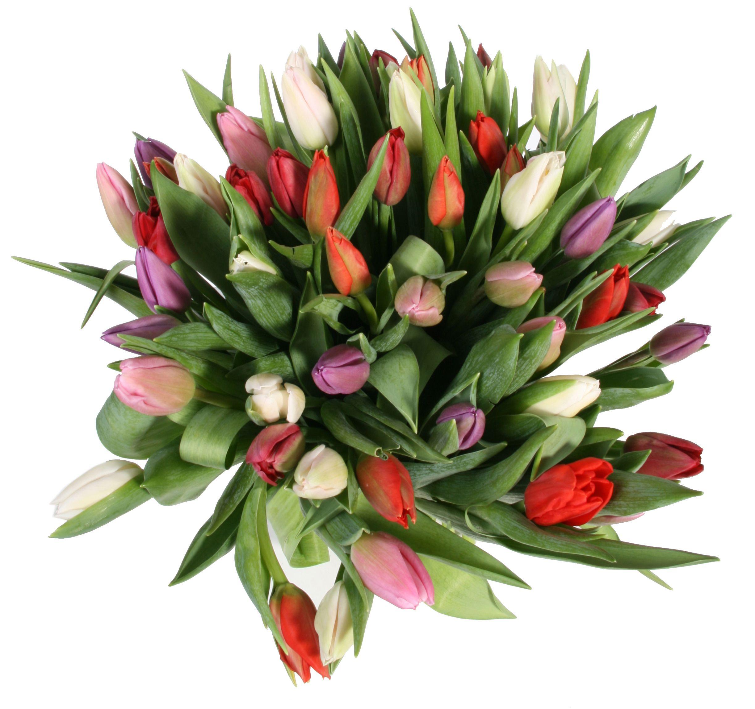 фото букетов из тюльпанов высокого разрешения фоны