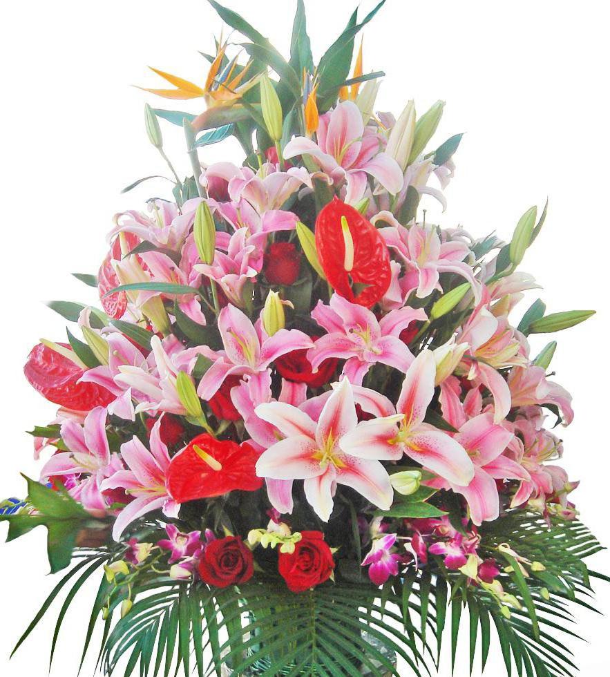 говорит, что цветы лилии огромный букет картинки можете спрятать ваши